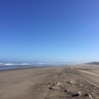 Tag 72 – Tag 76 /KM 1596 – KM 1780 / Von Gold Beach nach Goos Bay / Meilen, Muscheln, Meeresrauschen