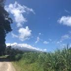 #2019 / Kilometer 2 / Betreutes Wohnen – oder wie ich auf den Kilimanjaro stieg (Teil 1)